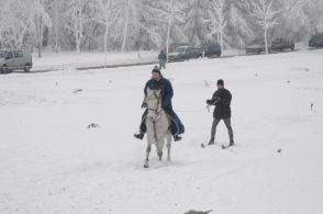 skikjoering_2010_88_20100126_1781661054