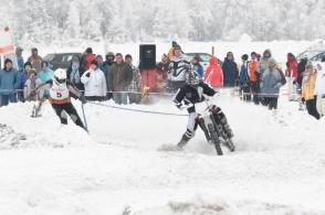 skikjoering_2010_42_20100126_1969728040