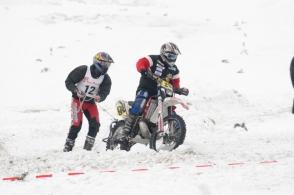 skikjoering_2010_61_20100126_1830203105